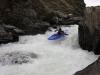 Nevis River: Zajíc
