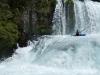 Rio Fuy: Zajíc mezi dropy