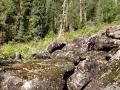 Sumulta: tohle určitě není standardní cesta k řece, ale nakonec jsme k ní došli