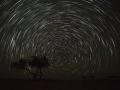 Wahiba sands: hvězdné dráhy nad pouští