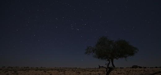czWadiba-sands-tak-kolik-má-náš-hotel-hvězdiček-enWahiba-sands-so-how-many-stars-does-our-hotel-have